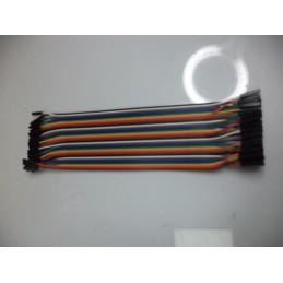 40pin dişi dişi jumper kablo